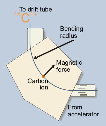 Tory wiązek jonów węgla w magnesie analizującym