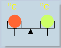 Masses of carbon isotopes