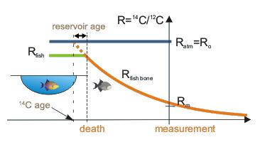 Reservoir effect